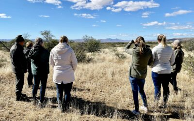 Cheetah tracking in the Eastern Cape